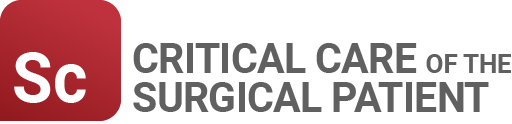 Critical Care of the Surgical Patient Image